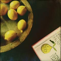 Lemons www.studiopolle.nl