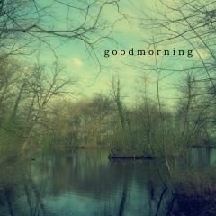 goodmorning I www.studiopolle.nl