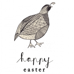 Happy Easter www.studiopolle.nl