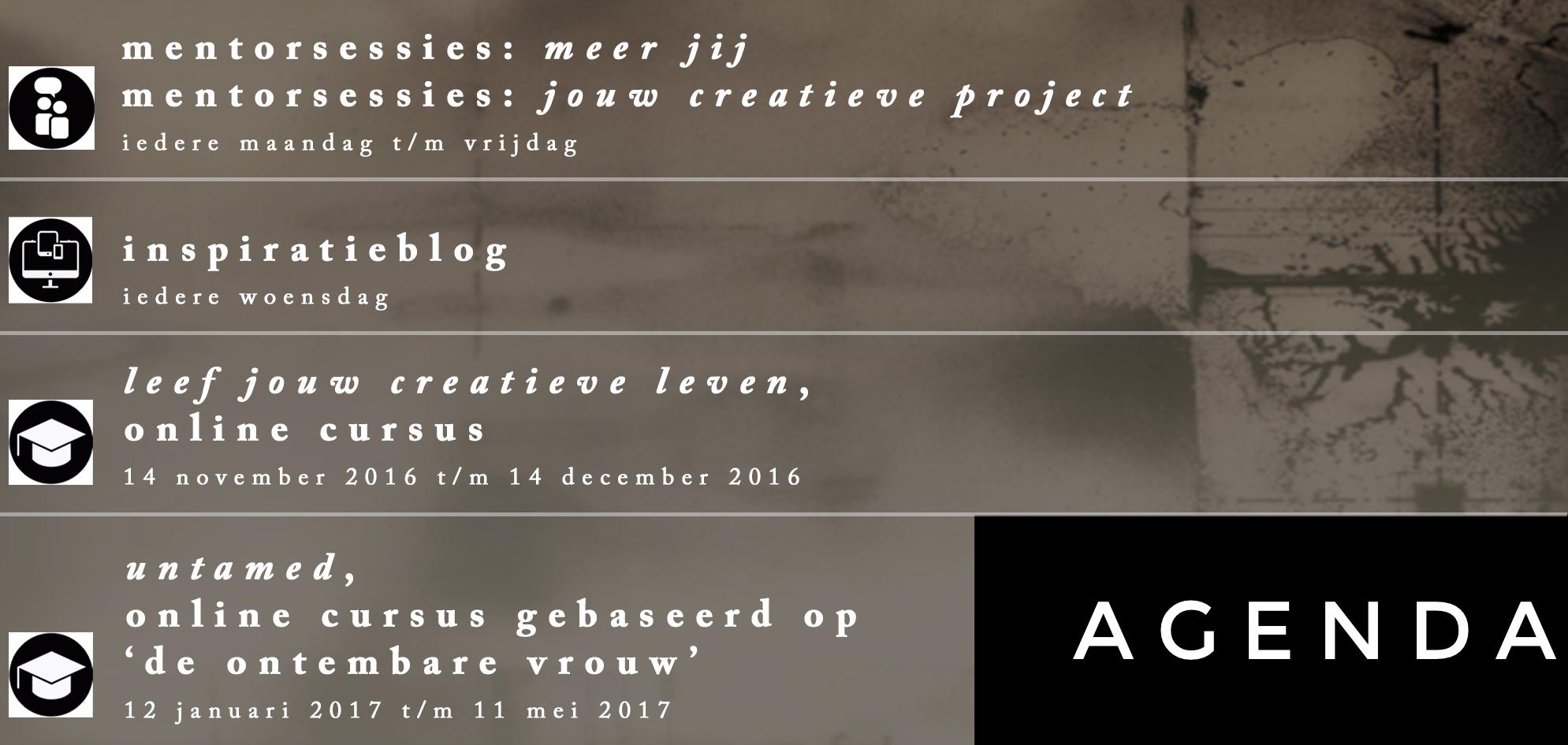 agenda www.studiopolle.nl
